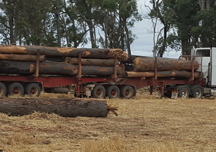 Nice load of Red Gum from a happy farmer